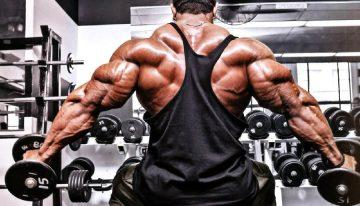 Things to Understand About Using Steroids