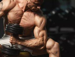 What Should Be The Ideal Short Steroid Cycles For Newbies