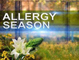 7 Essential Must-Haves for Allergy Season