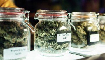 Finding the Best Dispensary near You and What to Expect