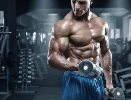 How Can Beginner Bodybuilders Benefit By Taking Six Week Anapolon Cycle