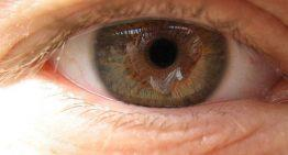 What's Macular Degeneration?