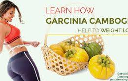 Garcinia Cambogia: Weight Loss Fact or Fiction?