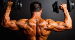 EPO – The Endurance Athlete's Steroid