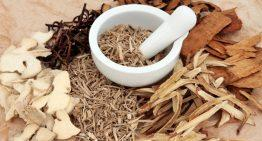 How Korean Red Ginseng Helps With Alzheimer's Disease