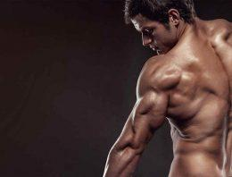 Anabolic steroids for bodybuilding purposes