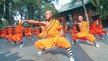 What to Expect when you Learn Kung Fu?