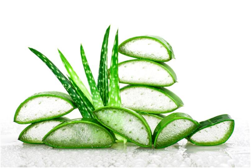 Amazing benefits of Aloe Vera for hair